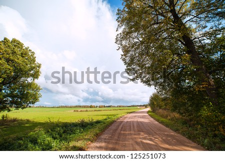 Country road in nice summer day. - stock photo
