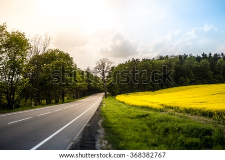 Country road in summer field. Sky with clouds in background. Yellow flowers in meadow and green trees along route. Car travel. - stock photo