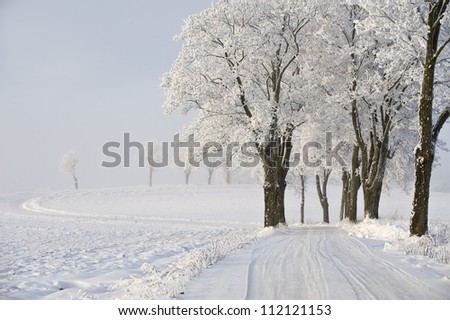 Country road in winter - stock photo