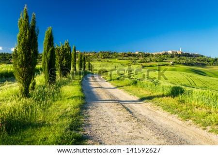 Country road leading to Pienza, Tuscany - stock photo