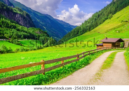 Country road leading to the alpine houses, in the background of green meadows and high peaks of the Alps, Zillertal, Austria - stock photo