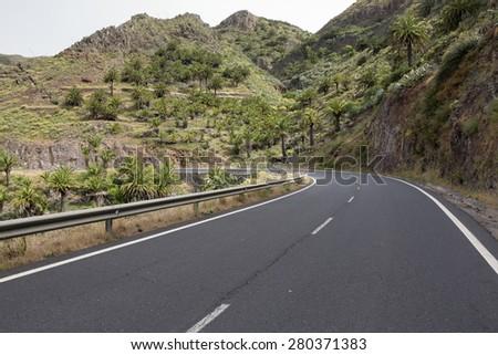 Country road on Gomera island, Spain - stock photo