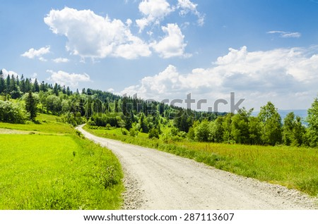 Country road on meadow - stock photo
