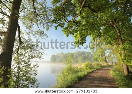 Country road on the edge of a lake on a foggy morning. - stock photo