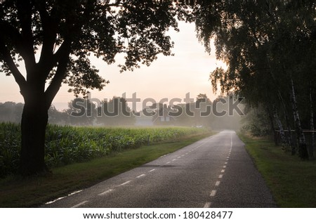 Country road with farm, trees and maize fields at sunrise - stock photo