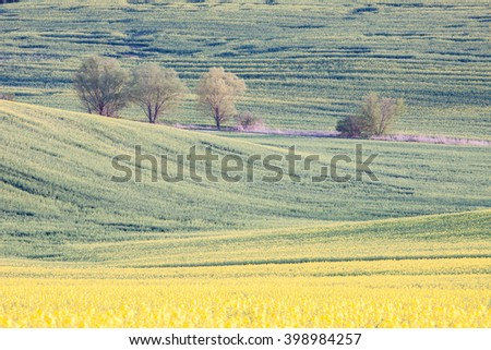 Countryside green and yellow farmland landscape - stock photo