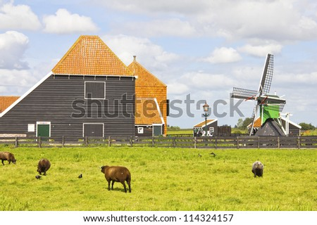 Countryside in The Netherlands - stock photo
