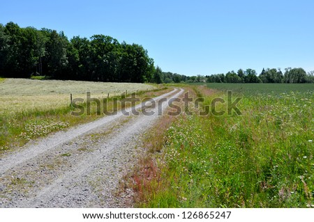 Countryside landscape with a small road. - stock photo