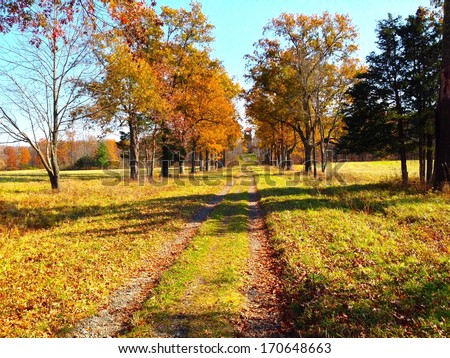Countryside Path - stock photo