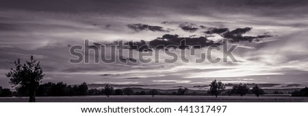 Countryside Summer Sunset Black and White With Trees And Field And Beautiful Clouds - stock photo