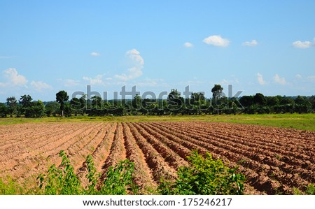 Countryside View of Furrowed Farmland in thailand - stock photo