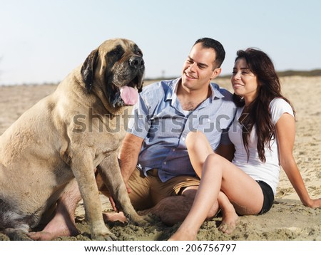 couple and pet dog enjoying time together on the beach. - stock photo