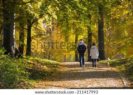 couple in autumn colors - stock photo