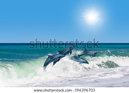Couple jumping dolphins, blue sea and sky - stock photo