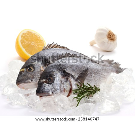 Couple of fresh gilt-head, lemon, rosemary on ice, top isolated  - stock photo