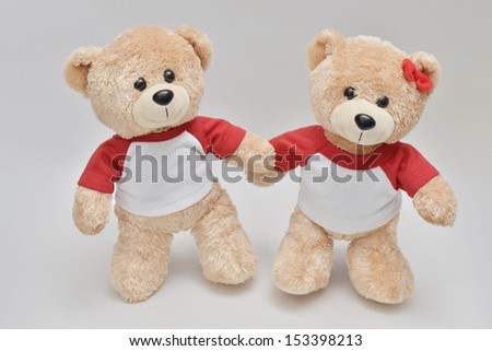 Couple of standing light brown teddy bear on white background - stock photo