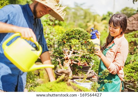 Couple of young gardeners with bonsai (soft focus on the eyes of woman) - stock photo