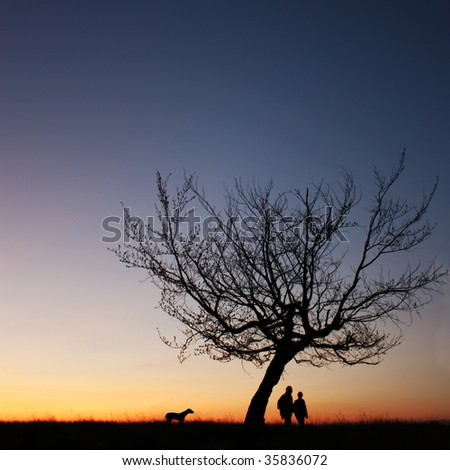 couple silhouette in the sunset light - stock photo