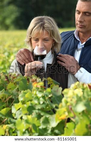 Couple tasting red wine - stock photo