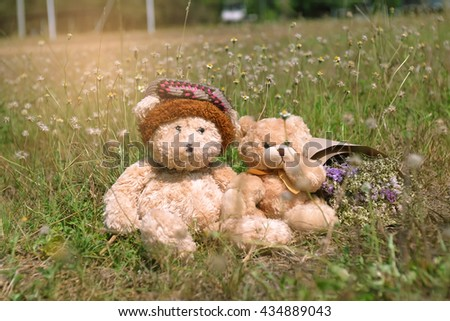 Couple teddy bears sitting on the beautiful meadow with love. Concept thinking about love and relationship - stock photo