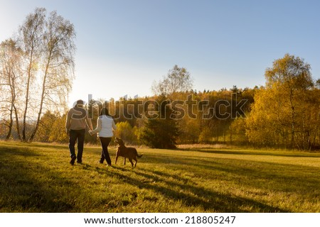 Couple walk retriever dog autumn sunset countryside meadow holding hands - stock photo