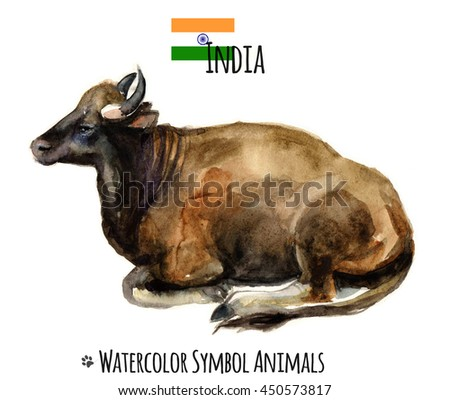 Cow - a symbol of India. Cow . Cow watercolor illustration . Milking cows breed . Indian cow - stock photo
