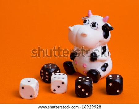 cow and cubes isolated on orange - stock photo