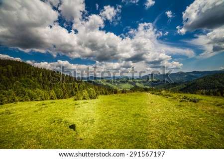 Cow on mountain pasture in the alps. - stock photo