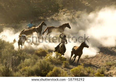Cowboy and cowgirl chasing wild horses with dust everywhere - stock photo