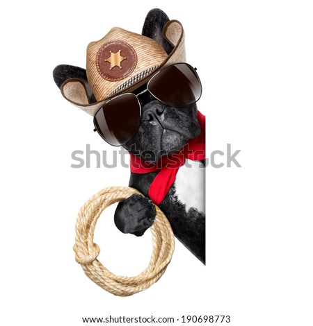 cowboy dog beside a white blank banner or placard - stock photo