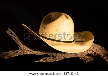 Cowboy hat and cholla skeleton isolated over black - stock photo