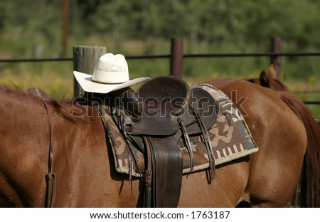 cowboy hat and horse saddle - stock photo