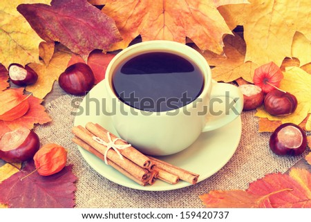 cozy cup of coffee and autumn leaves - stock photo