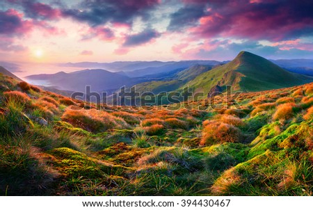 Cozy morning scene in the mountain. Rolling hills and foggy valley glow under warm sunlight. Sunrise in Carpathians, Ukraine. - stock photo