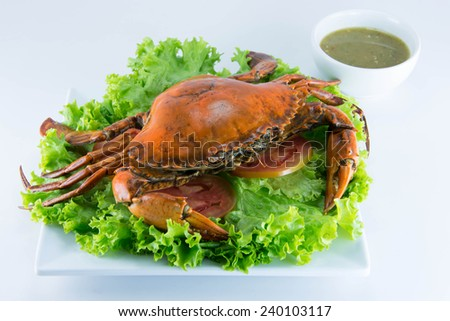 Crab Shrimp with kale and squid on white background - stock photo