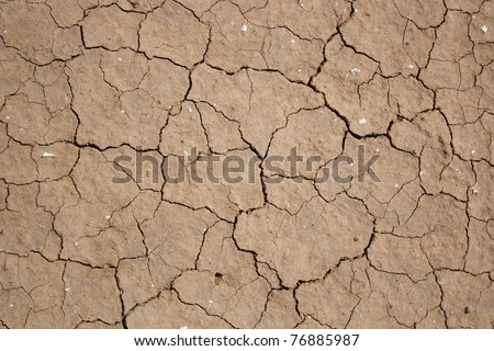 Cracked and dried mud texture - stock photo