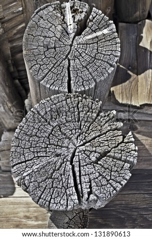 Cracked butt-end of two old weathered logs - stock photo