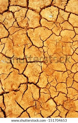 cracked clay - stock photo