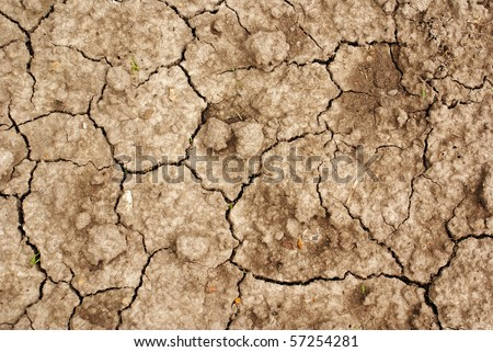 Cracked dry ground - stock photo