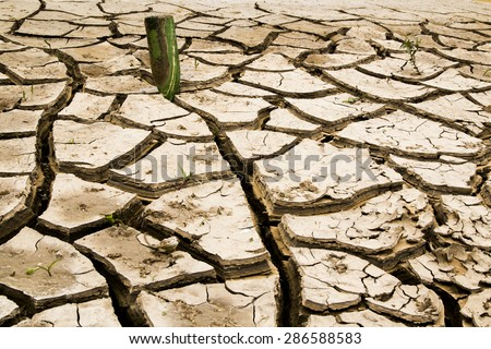 Cracked dry ground with water bottle in it.Concept:Problems in enviroment, Thurst, dehydrated ground - stock photo