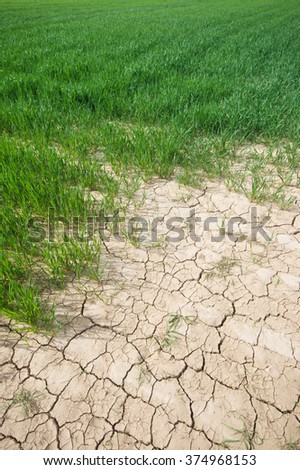 Cracked dry soil on agricultural field - stock photo