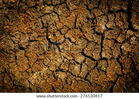 Cracked earth abstract natural background - stock photo