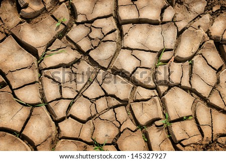 Cracked earth background. Parched Earth - Soil Conservation, Drought, Erosion - stock photo