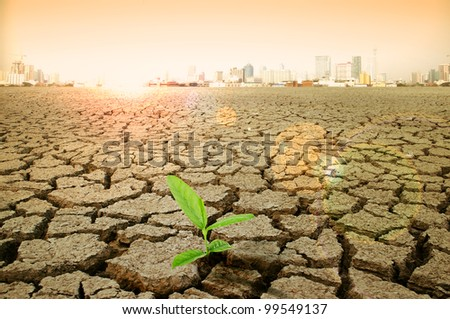 cracked earth - concept image of global warming. - stock photo