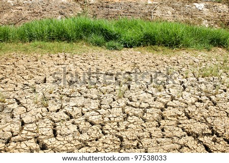 Cracked ground after flood and The grass is green - stock photo