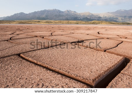 cracked land & drought & thirst - stock photo