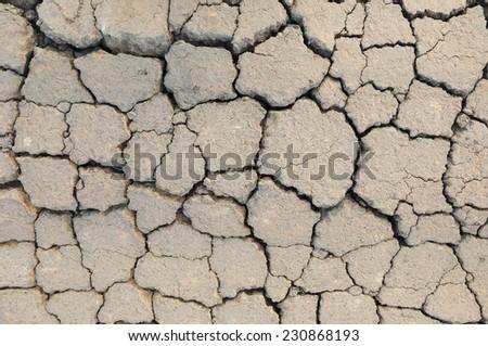 Cracked road texture - stock photo