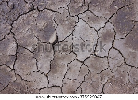 Cracked soil dry earth texture,background. - stock photo