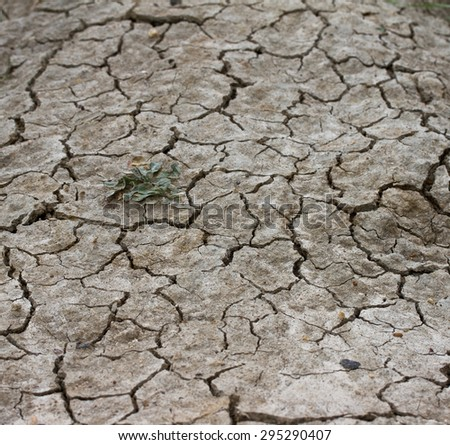 Cracks in the land in rural areas. - stock photo