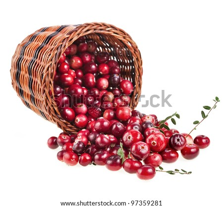 cranberries in the basket isolated on white background - stock photo